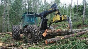 Challenges and opportunities as timber processing industry grows