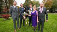 Dwans take top dairy prize