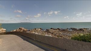 Man, 50s, dies after getting into difficulty at Dublin's Forty Foot