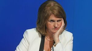 Tánaiste rules out 'conscience clause' for firms opposed to marriage equality