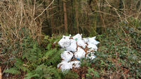 Call for action on illegal dumping in North Cork