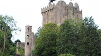 Village row over plans for Blarney's 250th birthday