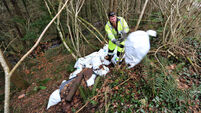63,000 lodge environmental complaints with local authorities