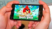 QUIRKY WORLD ... Angry Birds show off their displeasure over extinction