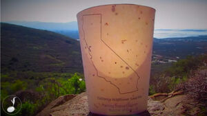 Good ideas: The disposable coffee cup that turns into a tree