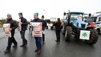Aldi 'disappointed' by 'shortsighted' blockade as farmers demand action over beef prices