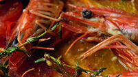 QUIRKY WORLD ... Sound fishy? Prawns could be a key beauty ingredient