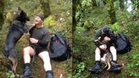 The moment a police dog was reunited with his handler after a week lost in the wilderness