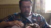 Arnold Schwarzenegger flexes acting chops in zombie movie
