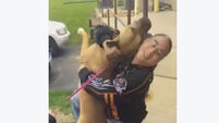 WATCH: This reunion between owner and dog lost two years ago is really emotional