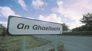 Let's speak Gaeilge however we can and wherever we want
