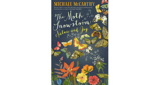 Book Review: The Moth Snowstorm Nature and Joy
