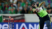 Ireland braced for tough encounter with 'wounded' Aussies