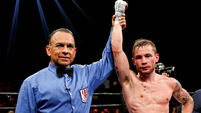 Jackal wounded but Carl Frampton has plenty fight left