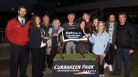 New €10,000 bitch stake for Curraheen Park