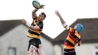 Ulster Bank League previews
