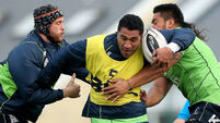 Pat Lam: Mils Muliaina delivered for Connacht rugby