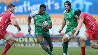 Lam wants more from Connacht