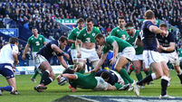 Joe Schmidt: We have to be better again for World Cup