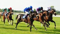 Today's Tips: Step up in trip can do trick for Weather Watch at Gowran