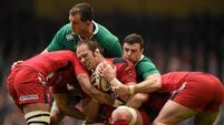 Short term pain will offer Rugby World Cup gain