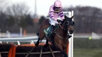 Zarkandar seeking World Hurdle domination