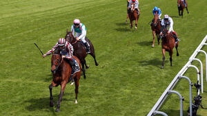 Cirrus tops the Saturday Longchamp bill