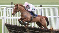 Annie Power leads mares' hurdle Cheltenham hopefuls