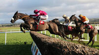 Don Cossack the beneficiary as Champagne Fever slips up
