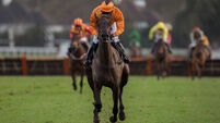 Tea For Two to stay in novice company rather then go for World Hurdle