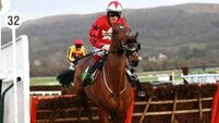 The New One gets go-ahead for Champion Hurdle Trial at Haydock