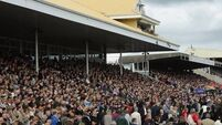 Listowel hopeful tomorrow's card will go-ahead