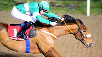 Ayr Gold Cup target for Your Pal Tal