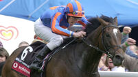 Epsom Derby hero Chaparral put down