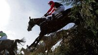 Aintree and BHA can take a bow over Grand National