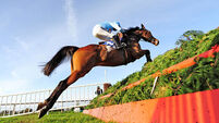 Walsh thrilled with Sceaux spin