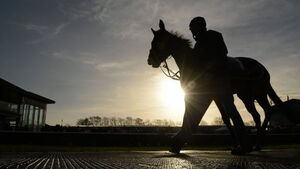 Struthers: Jockeys must decide on vision problems caused by sun
