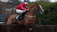 Sire De Grugy in line to start cantering next week