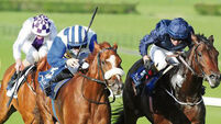 Simple Verse gets Leger crown