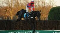 Nicky Henderson still undecided about Sprinter Sacre's next outing