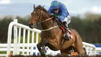 Hurricane Fly and Jezki on course to meet for a seventh time in Irish Champion