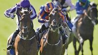Diamondsandrubies sparkles in Polly win