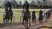 Don Cossack checks in for Ryanair Chase at the Cheltenham