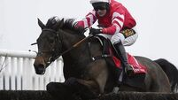 Coneygree set to rest on his Gold Cup laurels