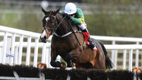 Jessica Harrington aiming for more Jezki glee