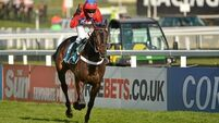 Sprinter Sacre looks poised to regain crown at Betway Queen Mother Champion Chase