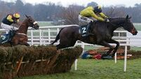 Tullow Tank to have tilt at Ryanair Gold Cup