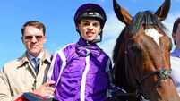 Donnacha O'Brien passes Saval Beg exam
