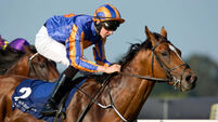 Gleneagles set for Curragh spin