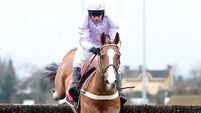 Geraghty hopeful of making  Punchestown